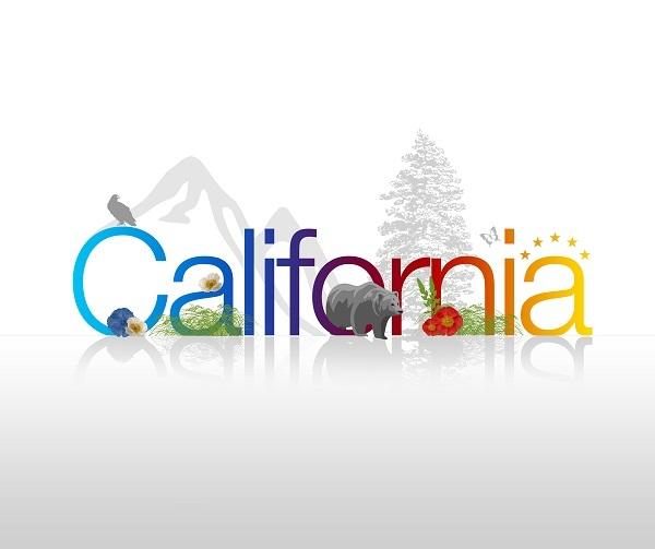 Why Senate Bill SB800 Was So Important for California